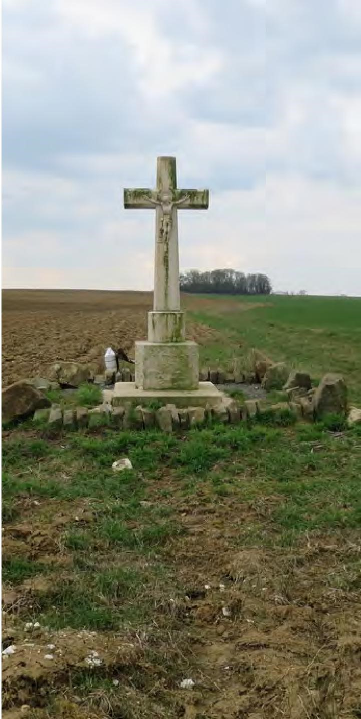 Hardicourt cross